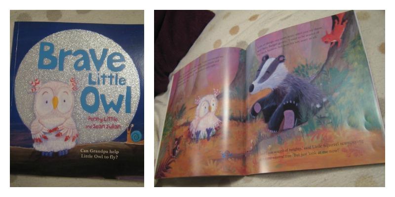 Brave Little Owl by Penny Little