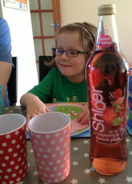 Shloer Raspberry and Rhubarb Punch