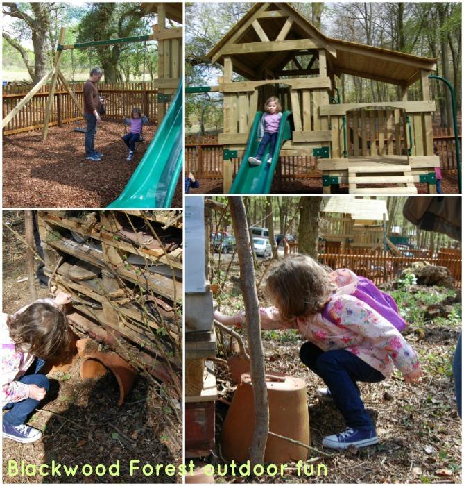 Blackwood Forest Outdoor Fun