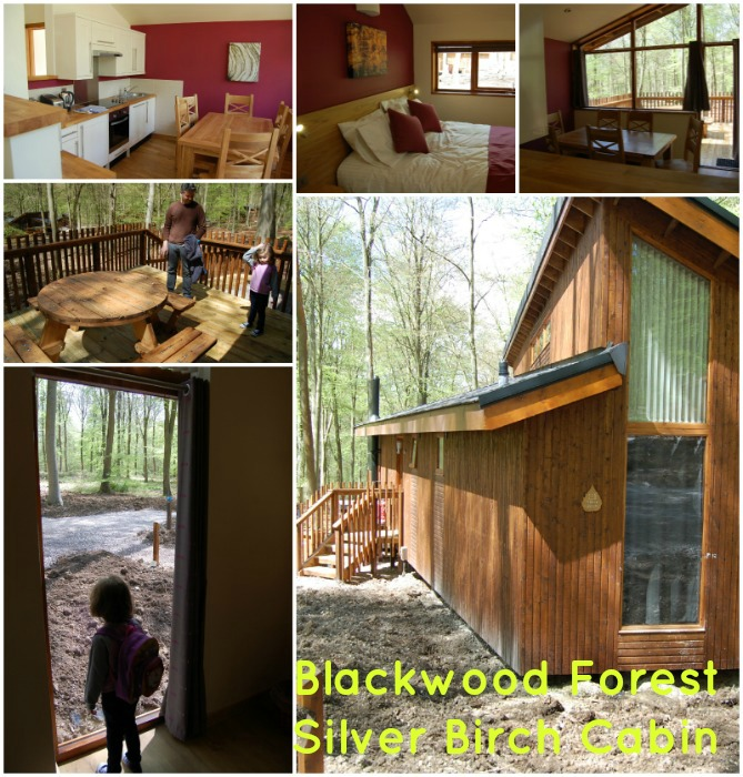 Blackwood Forest Silver Birch Cabin