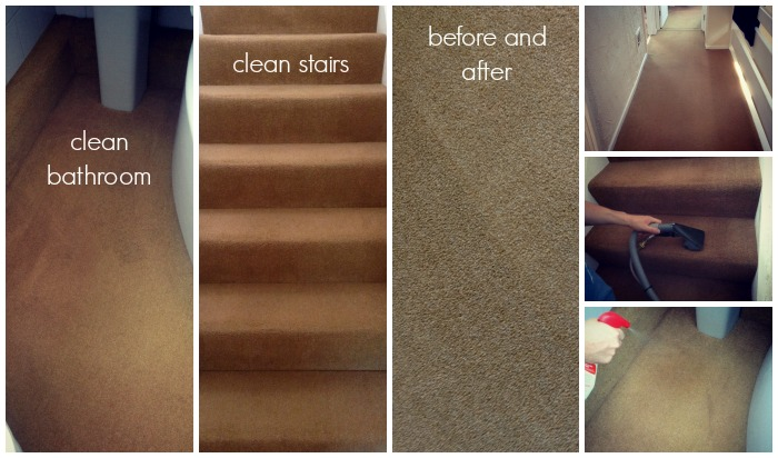 Reviewing a rug doctor carpet cleaner talk about clean for How long should carpet last