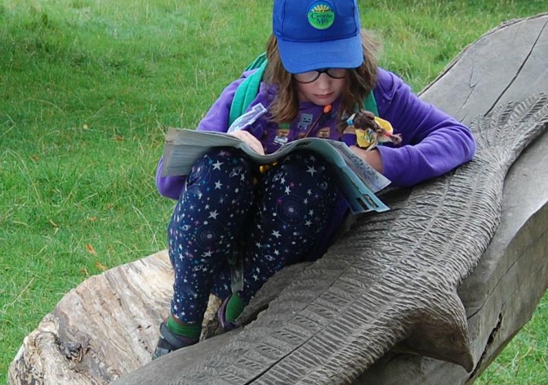 Brownie Lottie Map reading