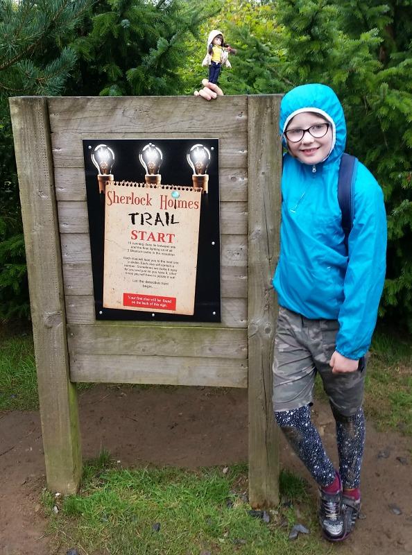 Brownie Lottie Sherlock Holmes Trail at Hidden Valley