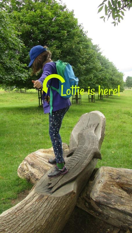 Lottie in pocket