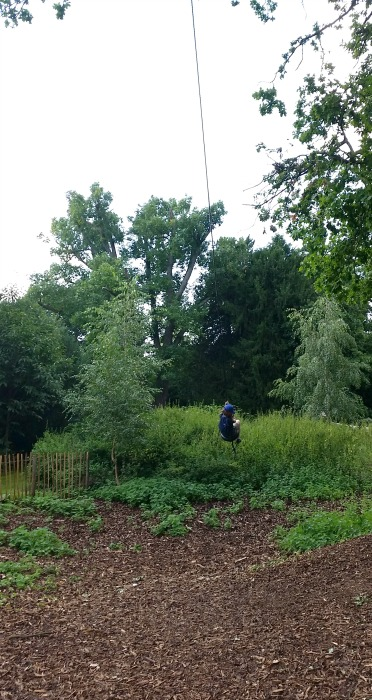 Osterley Park rope swing