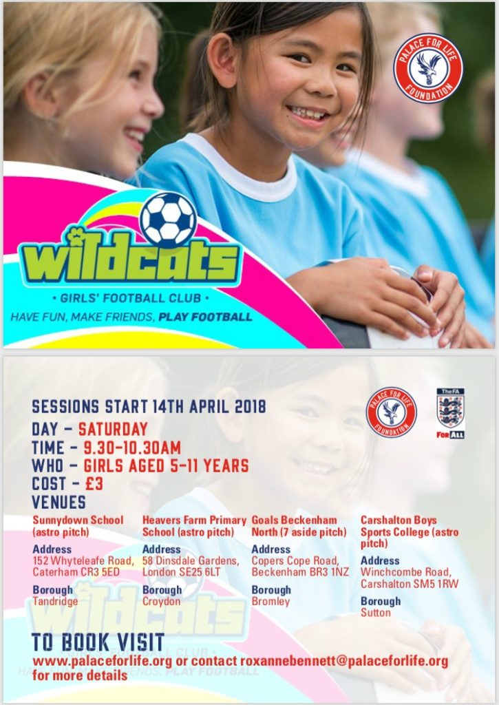 Crystal Palace Wildcats sessions 2018