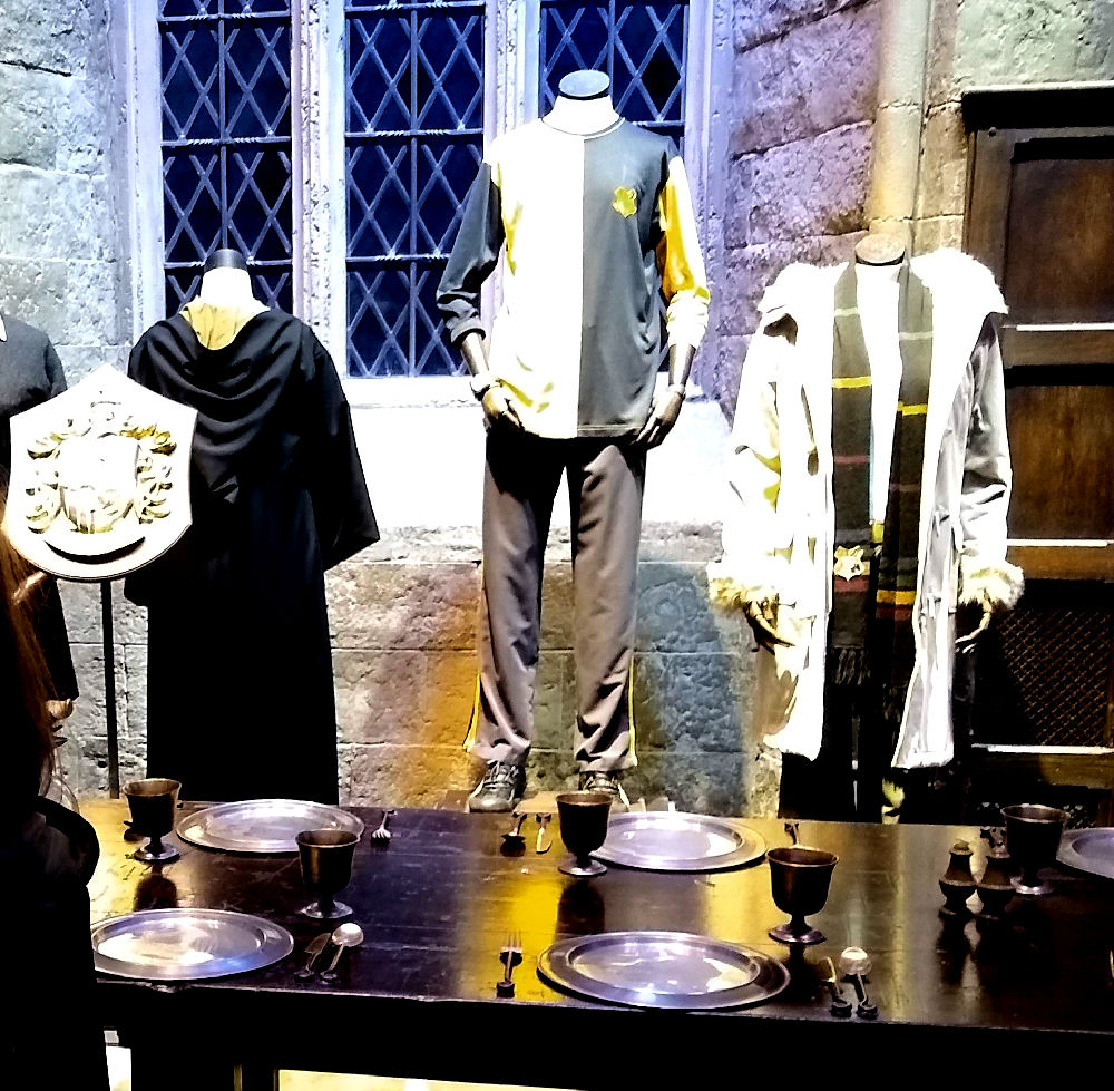 Hufflepuff Cedric Diggory Robes
